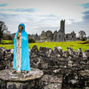 Official Greeter At Ireland's Quin Abbey National Monument Art Print