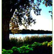 Ohio Pond Art Print