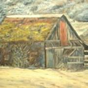 Old Barn Mossey Roof Art Print