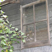 Old Barn Window Art Print