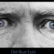 Old Blue Eyes Poster Print Art Print