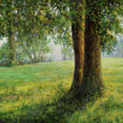 Old Elms In Kernave Art Print