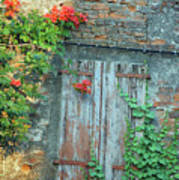 Old Farm Door Art Print