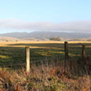 Old Fence And Landscape Along Sir Francis Drake Boulevard At Point Reyes California . 7d9965 Art Print