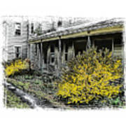 Old Homeplace Art Print