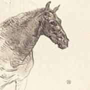 Old Horse (le Vieux Cheval) Art Print