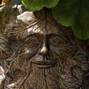 Old Man In The Garden Art Print