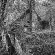 Old Mill Art Print