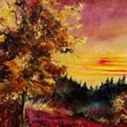 Old Oak At Sunset Art Print