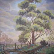 Old Oak Tree Creek Art Print