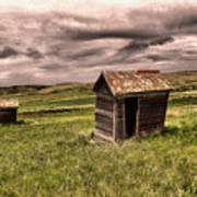 Old Outhouses Art Print