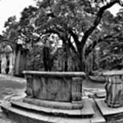 Old Sheldon Church Ruins Beaufort Sc Black And White Art Print