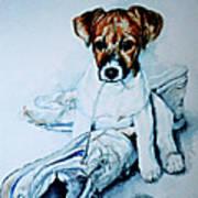 Old Shoe Pup Art Print