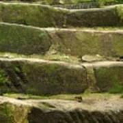 Old Stone Steps Art Print