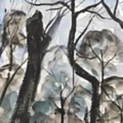 Old Tree Near Turkey Mountain Art Print