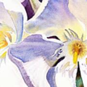 Oleander By Irina Sztukowski Art Print