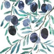 Olive Watercolor 2018 Art Print