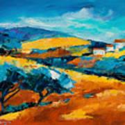 Oliviers En Provence Art Print