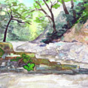On A Mountain River Art Print