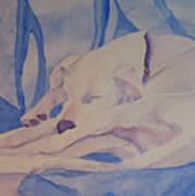 On Fallen Blankets Art Print