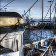 On The Docks In Provincetown Art Print