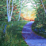 On The Path Art Print