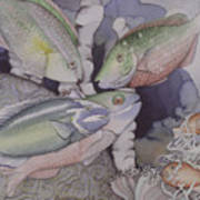 On The Reef Art Print