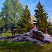 On The Rocks In Central Park Art Print