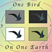 One Bird Poster And Greeting Card V1 Art Print
