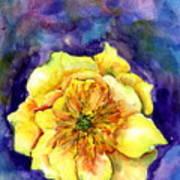 One Cactus Flower Art Print