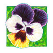 One Pansy For Marti Art Print