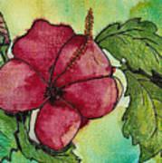 One Pink Hibiscus Art Print