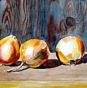Onions In The Sun Art Print