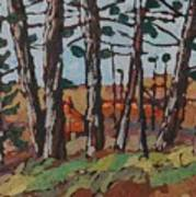 Opinicon November Forest Art Print