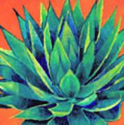 Orange And Agave Art Print