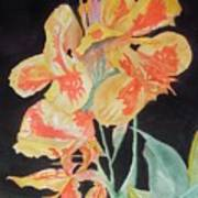 Orange And Yellow Canna Lily On Black Art Print