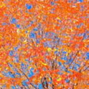 Orange Autumn Impression Art Print