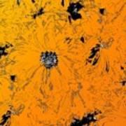 Orange Blast Art Print