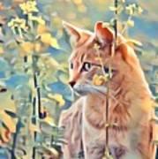 Orange Cat In Field Of Yellow Flowers Art Print