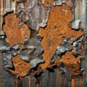 Orange Decay Art Print