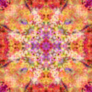 Orange Flower Mandala Art Print