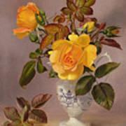 Orange Roses In A Blue And White Jug Art Print