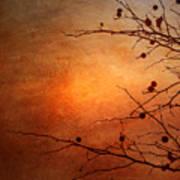 Orange Simplicity Art Print