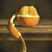 Orange Still Life Art Print