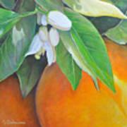 Oranges et Fleurs Art Print