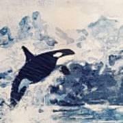Orca Glacier Art Print