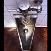 Orcas Island Urinal Art Print