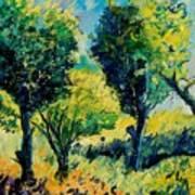 Orchard 562 Art Print
