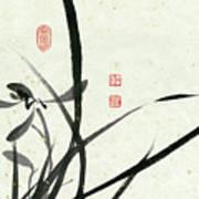 Orchid - 29 Art Print