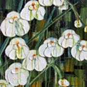 Orchid Dance Art Print